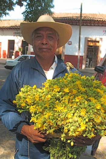 patzcuaro20